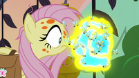 Flash bees swarm around Fluttershy's nose S7E20