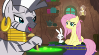 Fluttershy and Angel in friendship therapy with Zecora S9E18