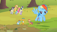 Rainbow Dash contentedly flies away S2E08