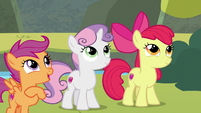"""Scootaloo """"when in doubt, chart it out!"""" S8E6"""