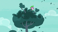 Spike watching the roc from the tree S8E11