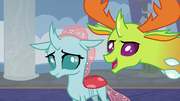 Thorax introducing Ocellus S8E1.png