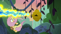Flash bees swarming over Fluttershy S7E20