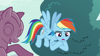 Rainbow Dash -I hope it's something about eating lunch- S5E19