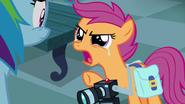 S07E07 Scootaloo zdenerwowana na Rainbow