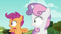 Sweetie and Scootaloo hears the voice of 'Orchard Blossom' S5E17