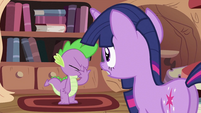 Twilight Sparkle looking at Spike 2 S2E03