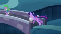 Twilight following Spike S5E26