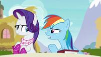"""Rainbow Dash """"what's so funny?"""" S8E17"""