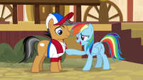Rainbow Dash calls Quibble weak S9E6