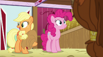 """Applejack """"in the barn during your visit"""" S5E11"""