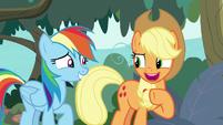 "Applejack ""up to you, Rainbow Dash"" S8E9"
