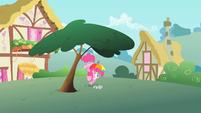 Pinkie Pie under a tree S1E15