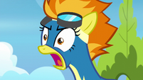 """Spitfire shouting """"look out!"""" S6E7"""