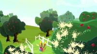 Apples popping across Sweet Apple Acres S8E18