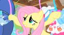 Fluttershy at her closet S01E22