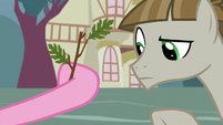 Mudbriar looking at Pinkie Pie's offering S8E3