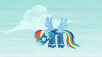 Rainbow Dash hangs back S6E7