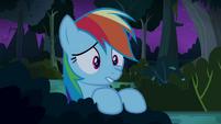Rainbow Dash worried for Daring Do S4E04