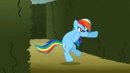 S02E01 Rainbow Dash gotowa do walki