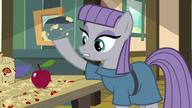 S04E18 Maud pięknie roztrzaskuje jabłka