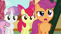 "Scootaloo ""you know what, Gabby?"" S6E19"