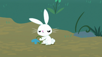 Angel Bunny looking annoyed S8E18