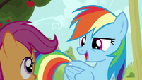 "Rainbow ""teamwork really comes into play!"" S5E17"