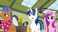 Shining Armor and Cadance looking at shield stand S7E3