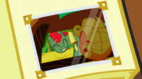 Smiling at filly Applejack photo S3E8