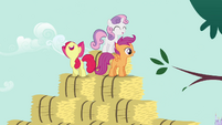CMC singing at the top of bales S2E17
