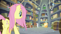Fluttershy and Angel enter the supply room S9E18