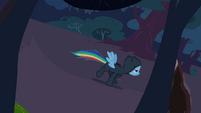 Rainbow Dash escaping through the woods S2E16