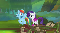 """Rarity """"what are you waiting for?"""" S8E17"""