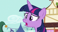 """Twilight Sparkle """"what is it, everypony?"""" S7E14"""
