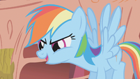 Rainbow Dash talks to the main 6 S1E07