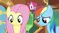 Rainbow and Fluttershy looks at Tank S5E5