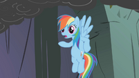 Rainbow says Fluttershy's scared of caves S1E07
