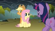 S01E07 Fluttershy tłumaczy swój lęk Twilight.png