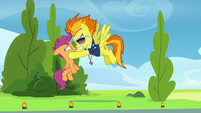 Spitfire yells even louder at Scootaloo S8E20