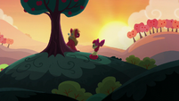 Apple Bloom joins Big Mac on the hill S5E17