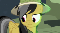 Daring Do looking at her wings S7E18
