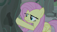 Fluttershy touching one of the rock pillars S7E25