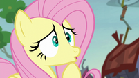 Fluttershy worried about the mice S5E23