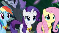 Ponies smiling at Twilight's speech S4E02