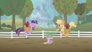 S01E03 Podekscytowane Twilight i Applejack