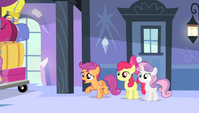 """Scootaloo """"what's going on?!"""" S4E24"""