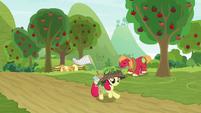 Apple Bloom runs past the orchard S9E10