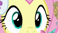 Fluttershy looking at Holly the Hearth Warmer MLPBGE