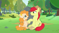Pear Butter -what do you want me to do- S7E13